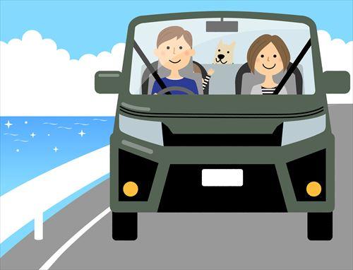 カーリースでペットを車に乗せるときの注意点