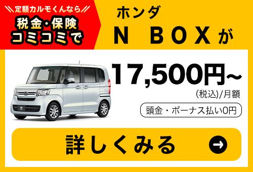 10013_N BOX