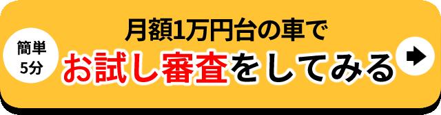 月額1万円台の車でお試し審査